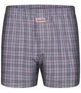 Boxershorts Checks 8101 L